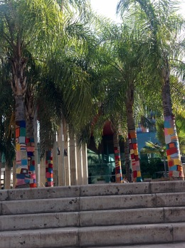 Palm trees wearing sweaters at Paseo de Buen Pastor