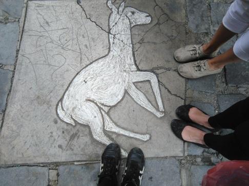 Llama in La Paz