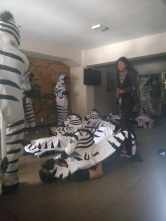 "Witnessing Rremotes in the Traffic Zebra ceremony, donning their ""zebra skins"""