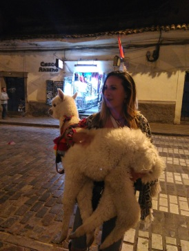 Casey on a mission to find every alpaca and llama in this town