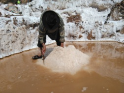 Salt collectors