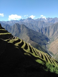 Incan terraces