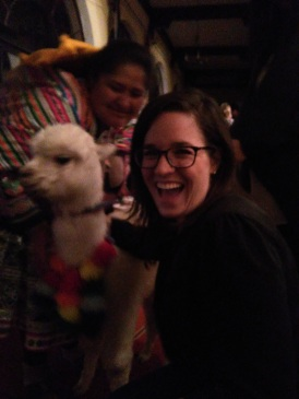 Poncho the alpaca!