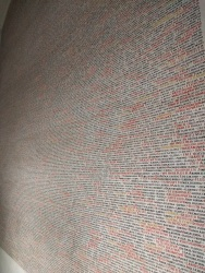 Pinkhas Synagogue, with hand-written names of Holocaust victims