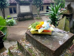 Hindu offerings left daily in front of every household