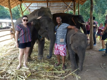 Saying goodbye to the elephants!