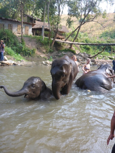 Bathtime with elephants was the best