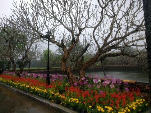 Beautiful landscaping at Hue citadel