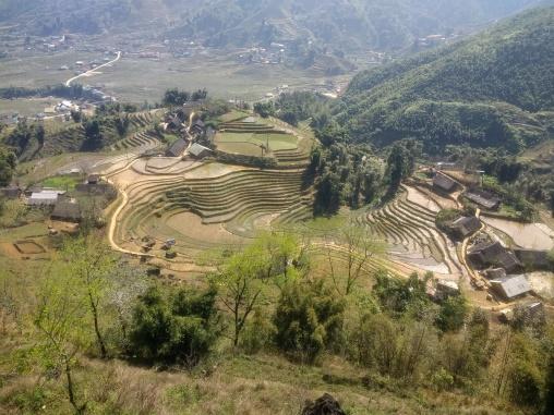 Sapa's famous rice terraces